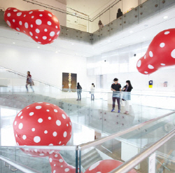 Kusama exhibition at SNU MoA