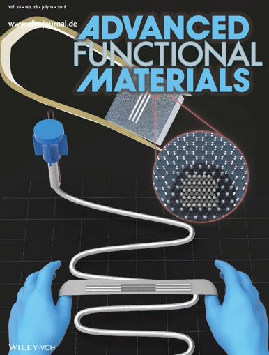 Professor Kauh Sang Ken and his student Kim Do-yoon has their research published in the back cover of the Advanced Functional Materials